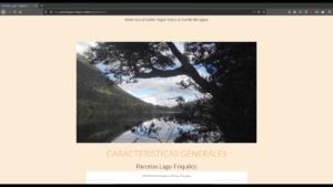 imagen proyecto parcelas pucon lago tinquilco